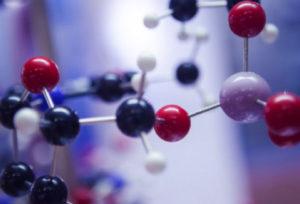 DsiRNA-EX_Conjugate_molecules