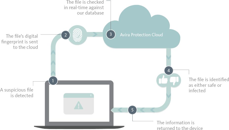 Read more about the article Cloud Based Virus protection